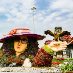 Dubai Miracle Garden Admission with Private Transfers